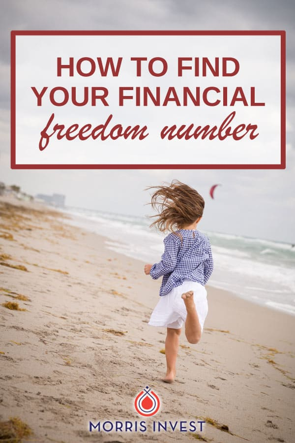 Everything you need to know about finding your Freedom Number. We're sharing tips, tricks, and apps you can use to get your finances under control, discussing ROI, and the false idea of job security.