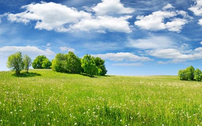 3 Reasons Why Investing in Raw Land is a Smart Financial Move