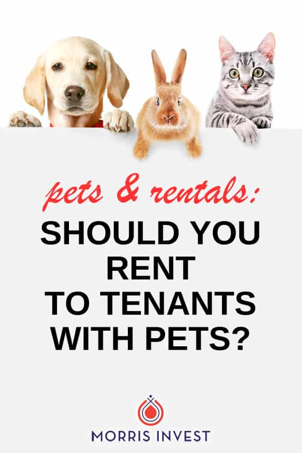 As a landlord,one of the decisions you'll need to make about your rental business is whether or not to allow pets. And there's a lot to consider!