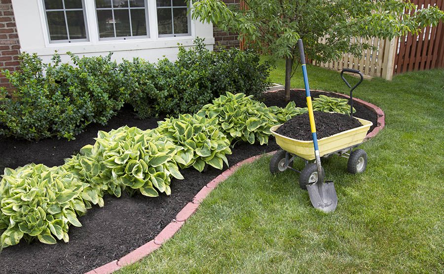 Rental Property Upgrades - Landscaping